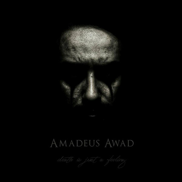 Death Is Just A Feeling by Amadeus Awad